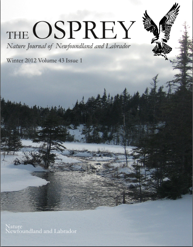 New Issue of The Osprey