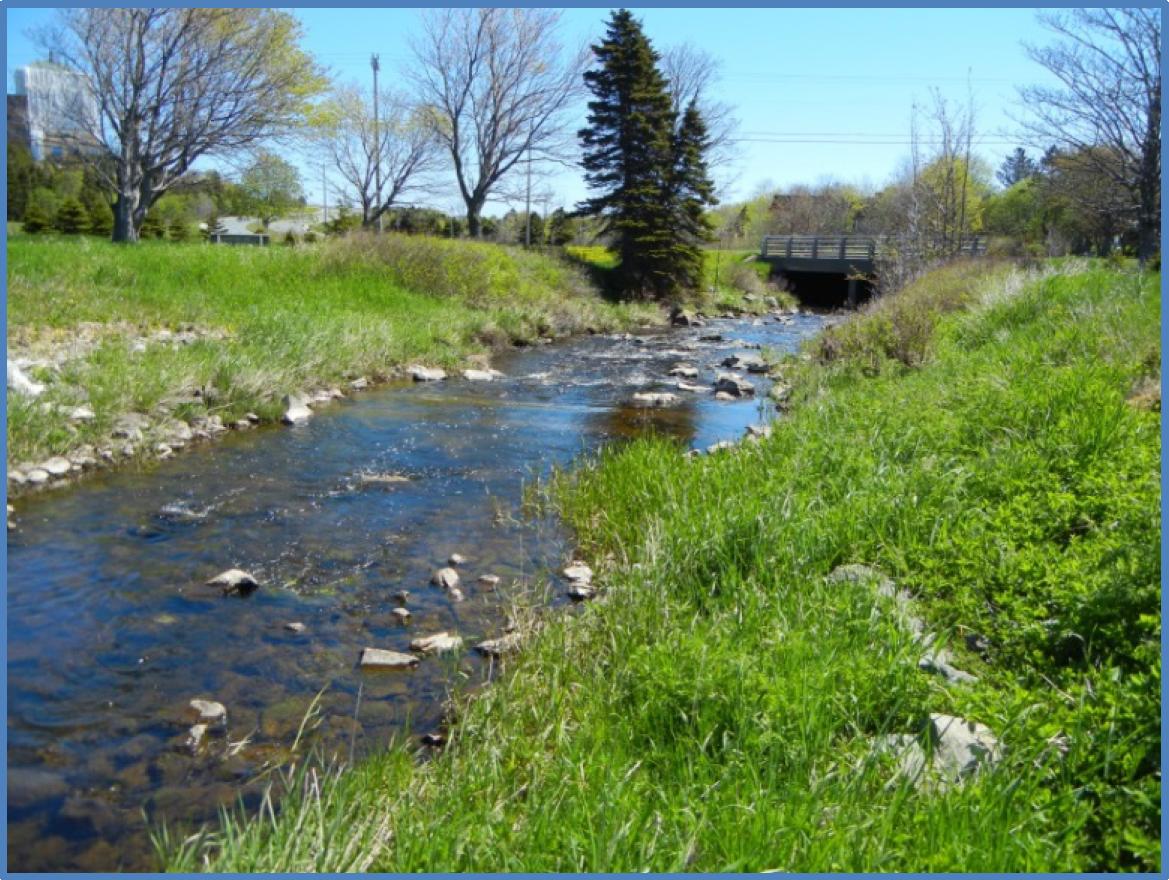 Comments on Rennies River Catchment  Stormwater Management Plan