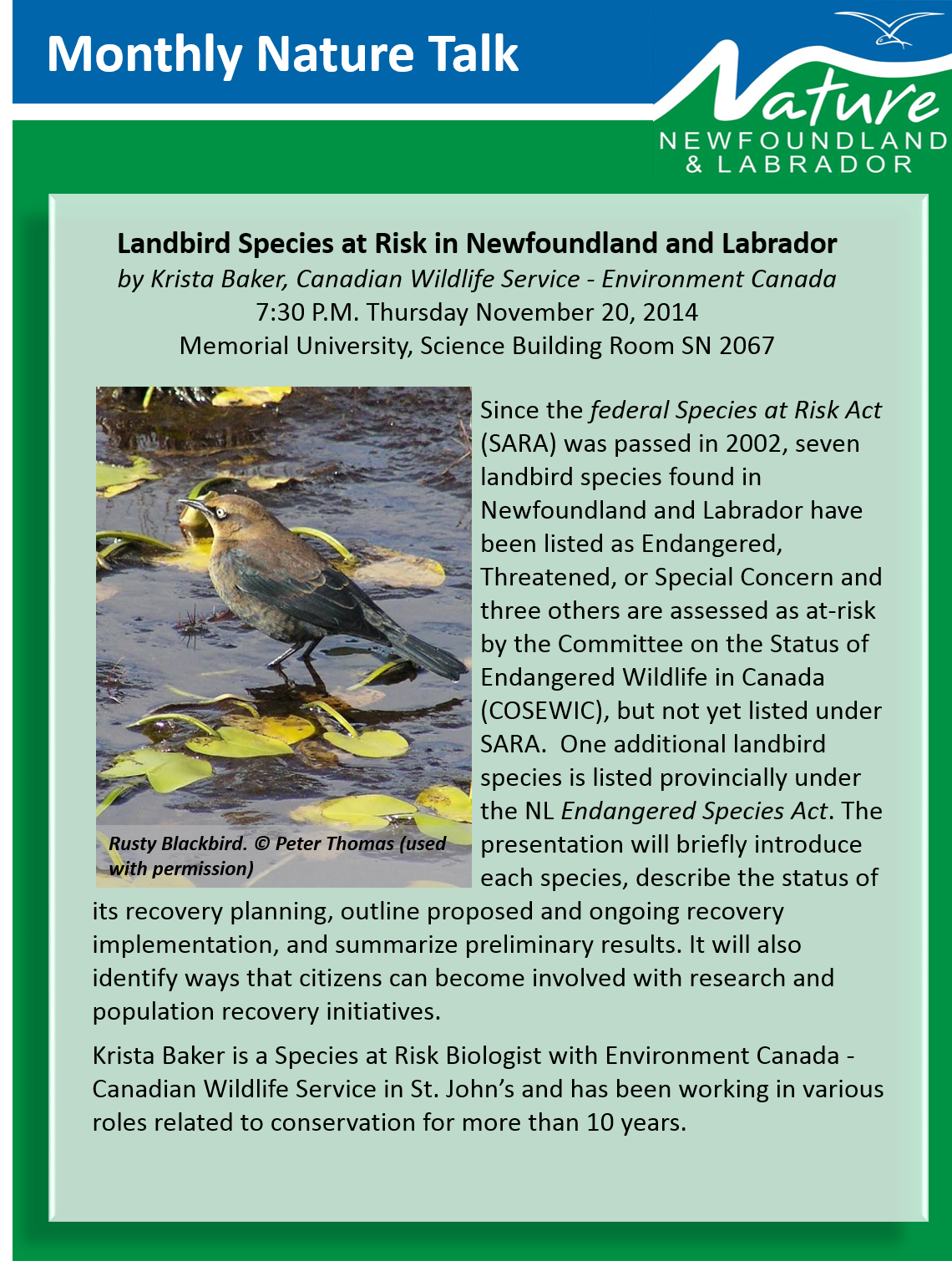 November Talk: Landbird Species at Risk
