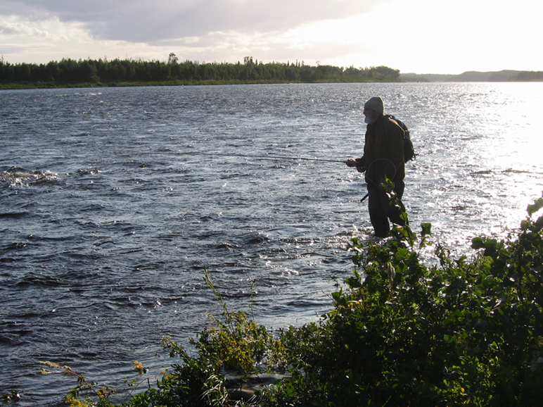 John Gibson angling for salmon on the Exploits River, following a visit to the Duck Pond mine site with members of the Sandy Pond Alliance, 27 August 2009. (Photo by J. Jacobs)