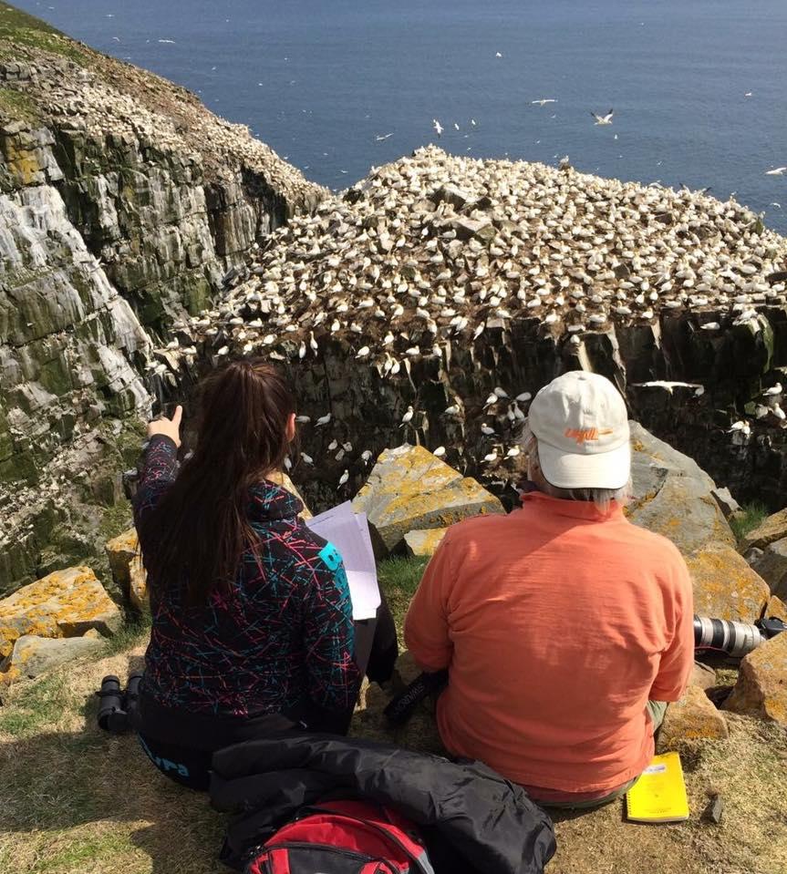 Air, Land, & Sea: Grad Student Research Talks