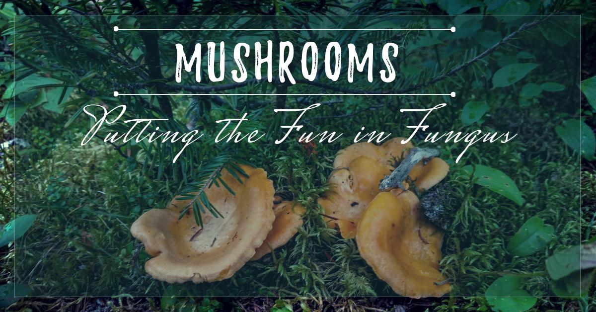 Mushrooms 101