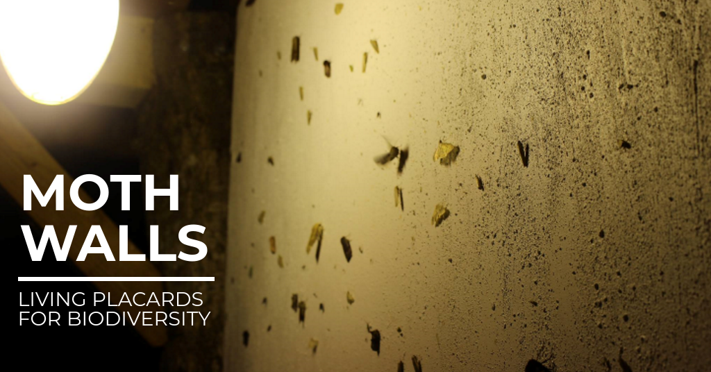 Moth Walls: Living Placards for Biodiversity