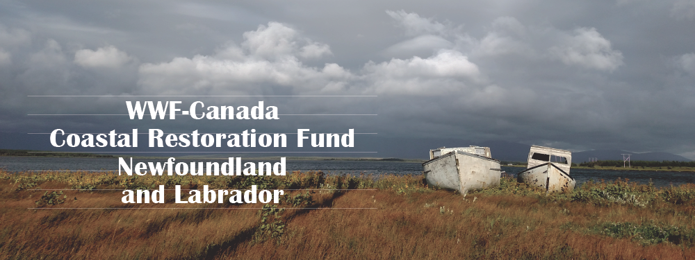 Add Your Voice for Coastal Restoration in Newfoundland and Labrador