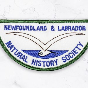 Retro Patch (green and blue)