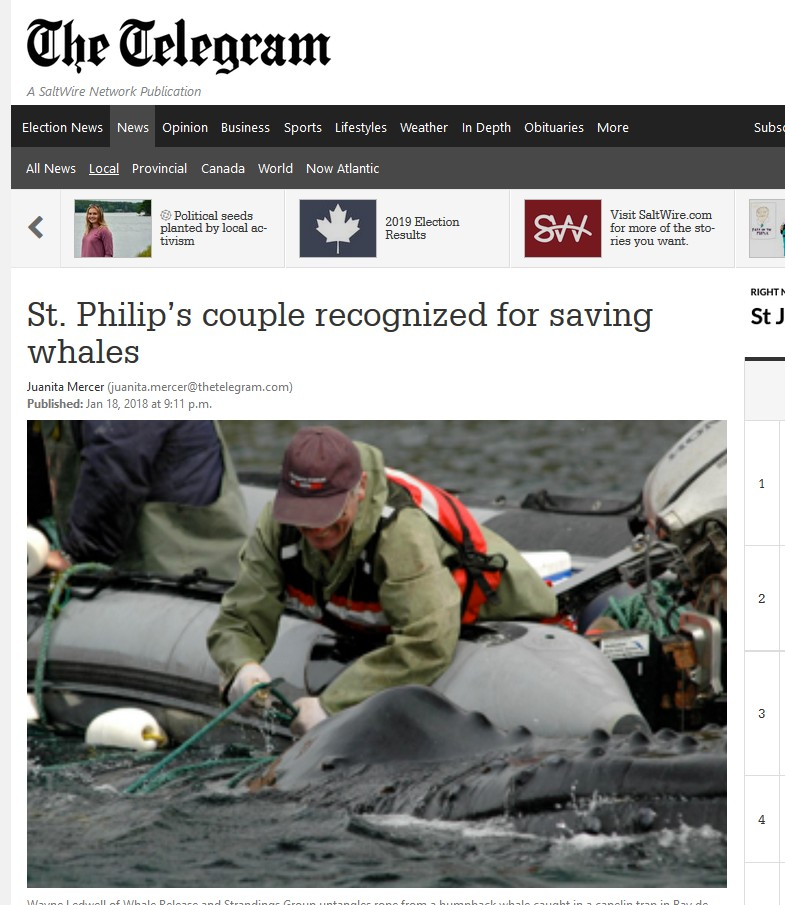 Whale rescue work recognized