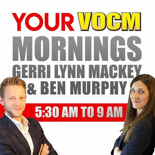 Tune in to VOCM Mornings to hear about Birdwatching Backpacks!