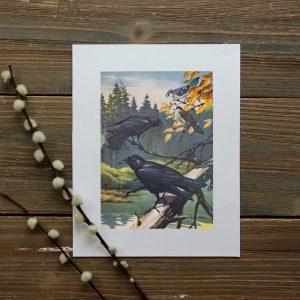 Birds of NL prints – waterfowl / corvids / woodpeckers